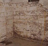 Peeling, Chipping, Basement Wall Coatings in Williamson